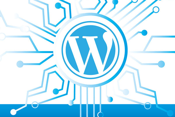 Почему Wordpress - DoCode DEV